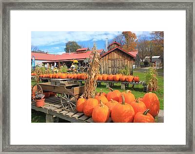 Autumn Harvest Pumpkins And Sugar House Framed Print