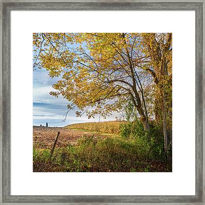 Autumn Harvest Square Framed Print