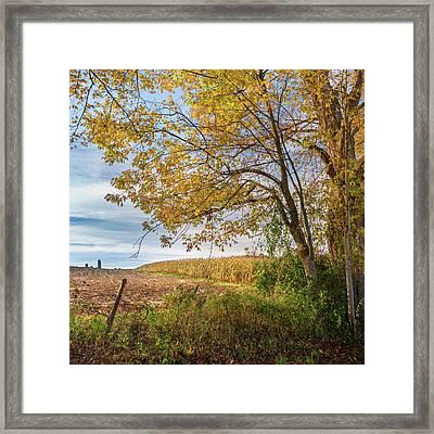 Autumn Harvest Square Framed Print