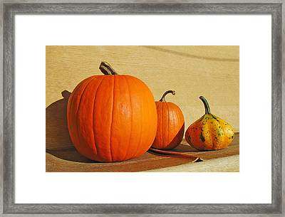 Autumn Harvest Still Life Framed Print by Tony Ramos