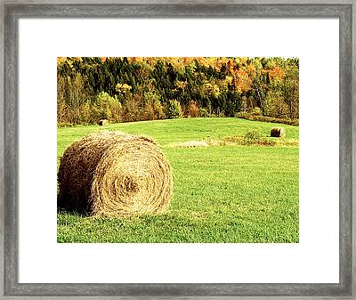 Autumn Hay Bales  Framed Print by Sherry  Curry