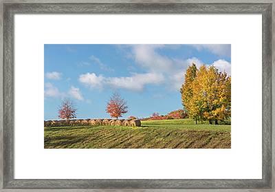 Autumn Hay Framed Print