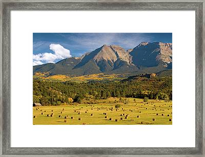 Autumn Hay In The Rockies Framed Print