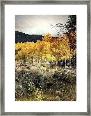 Autumn Hike Framed Print by Jim Hill