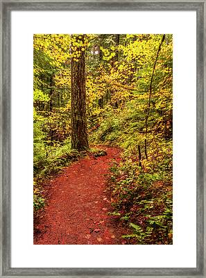 Autumn Hike Framed Print by Loree Johnson