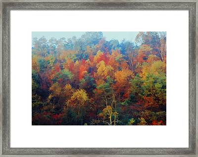 Framed Print featuring the photograph Autumn Hill Aglow by Diane Alexander