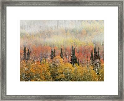 Autumn Hillside Framed Print by Leland D Howard