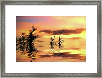 Autumn Hues Framed Print by Sharon Lisa Clarke