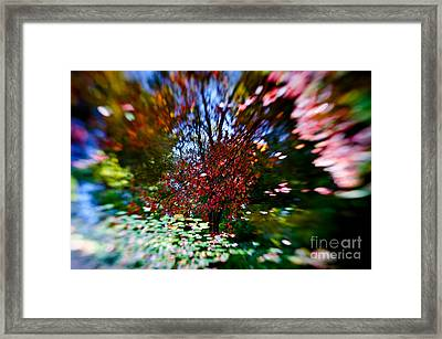 Autumn Impressions 2 Framed Print by Venetta Archer