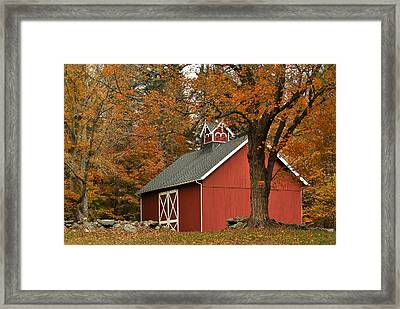 Autumn In Aspetuck Framed Print by Laura DAddona