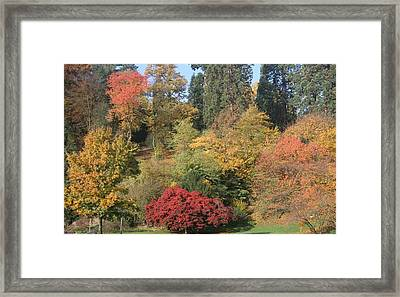 Framed Print featuring the photograph Autumn In Baden Baden by Travel Pics