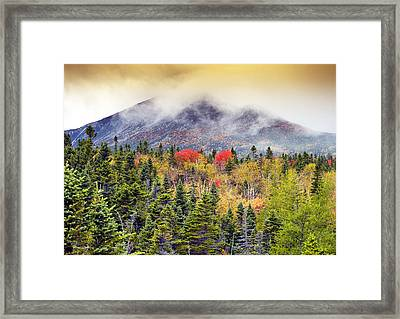 Autumn In Baxter State Park Maine Framed Print by Brendan Reals