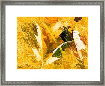 Autumn In Bright Abstract Framed Print