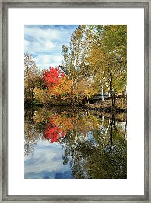Autumn In Chico Framed Print