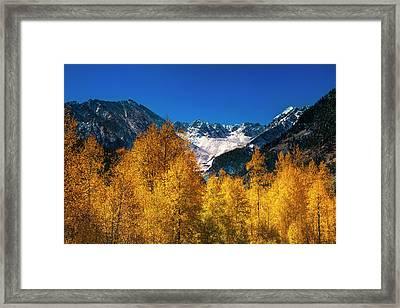 Autumn In Colorado Framed Print
