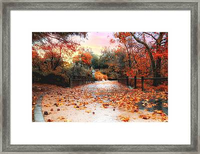 Autumn In Discovery Lake Framed Print
