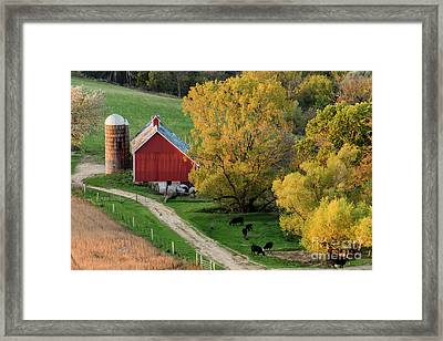Autumn In Iowa Framed Print