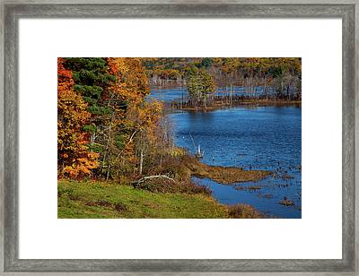 Autumn In Litchfield County Framed Print by Karol Livote