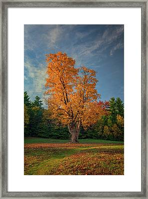 Autumn In Maine Framed Print by Rick Berk