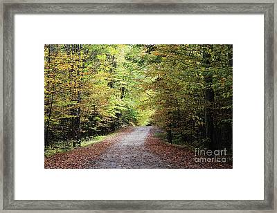 Autumn In Michigan Framed Print
