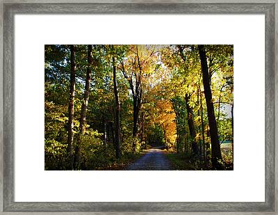 Autumn In Missouri Framed Print by Cricket Hackmann