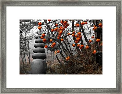 Autumn In Mountains Framed Print by Peteris Vaivars