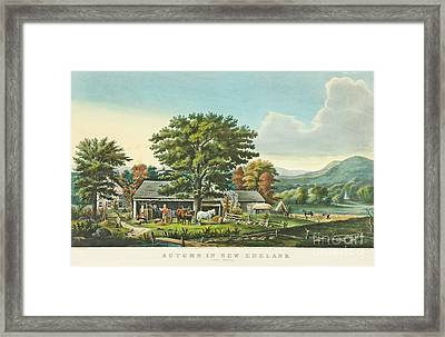 Autumn In New England. Framed Print