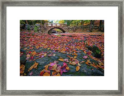 Autumn In New England Framed Print by Rick Berk