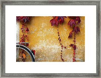 Framed Print featuring the photograph Autumn In Red by Yuri Santin