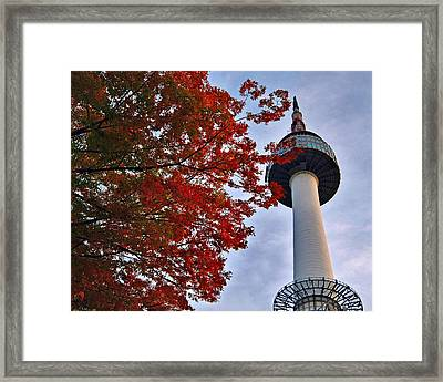 Autumn In Seoul Framed Print