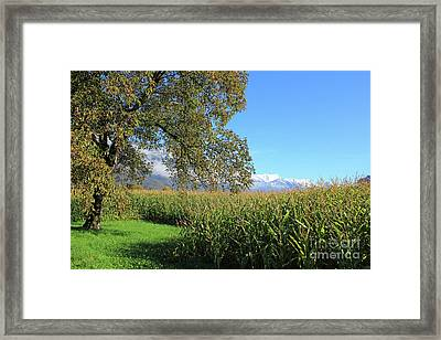 Autumn In Swiss Mountain Landscape Framed Print