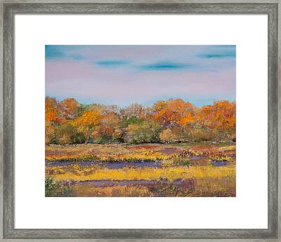 Autumn In The Adirondack Mountains Framed Print by David Patterson