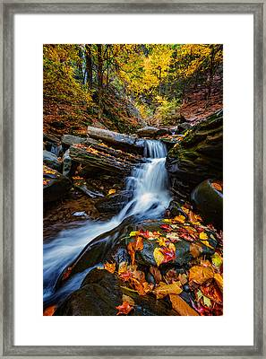 Autumn In The Catskills Framed Print