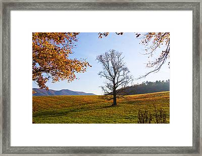 Framed Print featuring the photograph Autumn In The Cove by Bob Decker