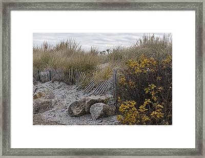 Autumn In The Dunes Framed Print
