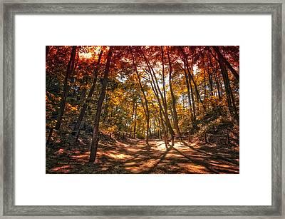 Autumn In The Dunes Framed Print