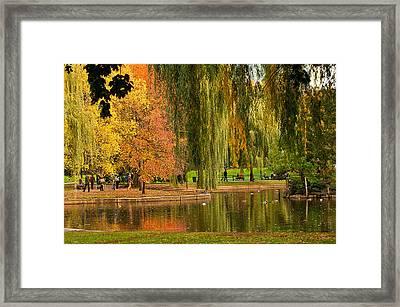 Autumn In The Garden Framed Print