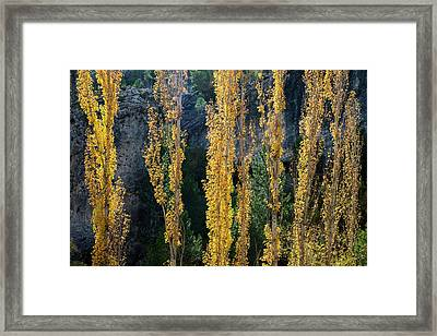 Autumn In The Hoz Del Escabas Gorge. In The Serrania De Cuenca, Spain - 2 Framed Print by Peter Eastland