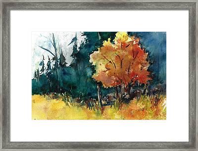 Autumn In The Ozarks Framed Print