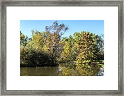 Autumn In The Park. Framed Print