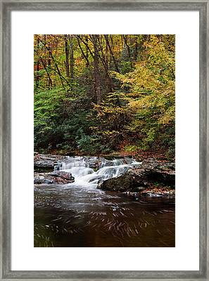 Autumn In The Smokies Framed Print by Andrew Soundarajan