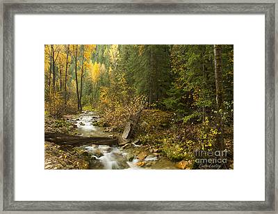 Autumn In The St Joe Framed Print by Idaho Scenic Images Linda Lantzy