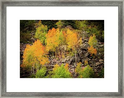 Autumn In The Uinta Mountains Framed Print