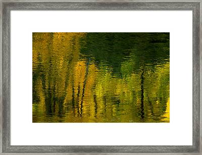Autumn In Truckee Framed Print by Donna Blackhall