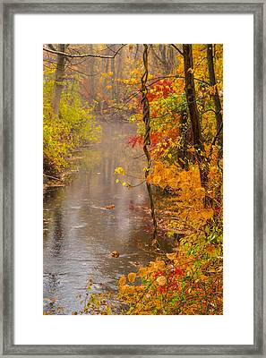 Autumn In Trumbull Framed Print by Karol Livote