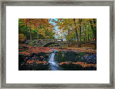 Autumn In Vaughan Woods Framed Print by Rick Berk
