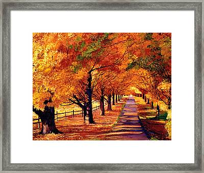 Autumn In Vermont Framed Print by David Lloyd Glover