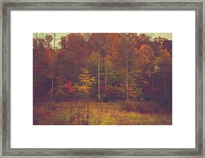 Autumn In West Virginia Framed Print