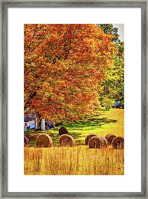 Autumn In West Virginia Framed Print by Steve Harrington