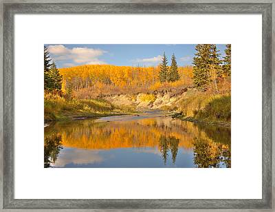 Autumn In Whitemud Ravine Framed Print by Jim Sauchyn